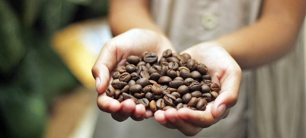 hạt cà phê sau khi rang